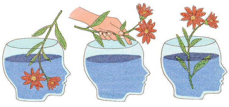 Разница между интеллектом и рациональным мышлением