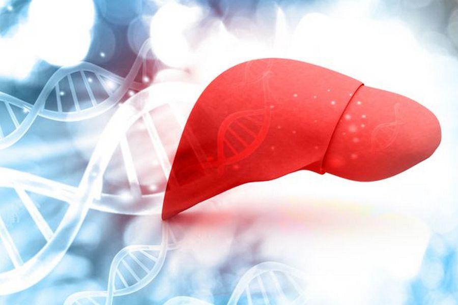 Опасный гепатит С: медики о лечении вируса