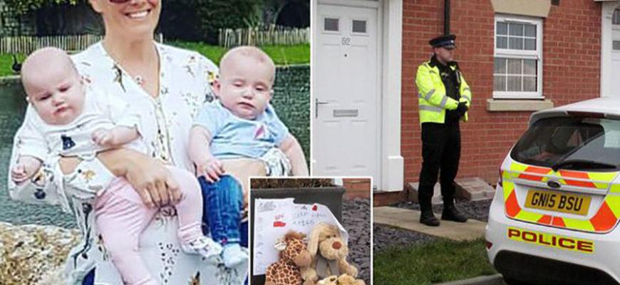 Жительница Великобритании утопила мешавших ей малышей-близнецов