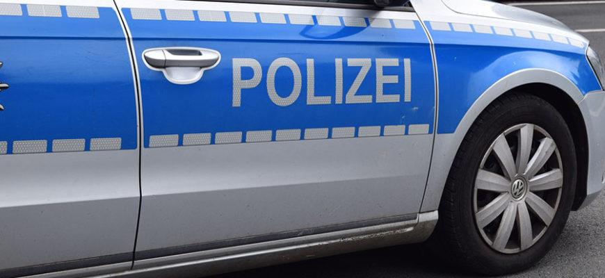 В Германии агрессивный мигрант покусал женщину-полицейского и собаку