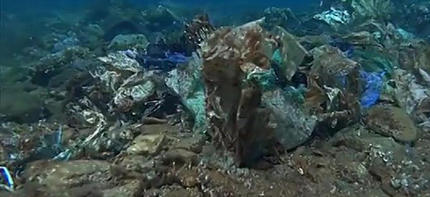 В Эгейском море нашли огромный риф из полиэтиленовых пакетов