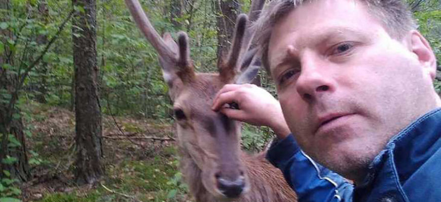 Дикий олененок два часа «собирал грибы» вместе с парнями из Беларуси