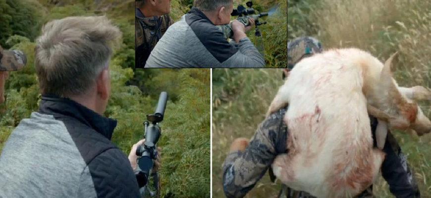 Известного британского ведущего раскритиковали за жестокое убийство козла в эфире