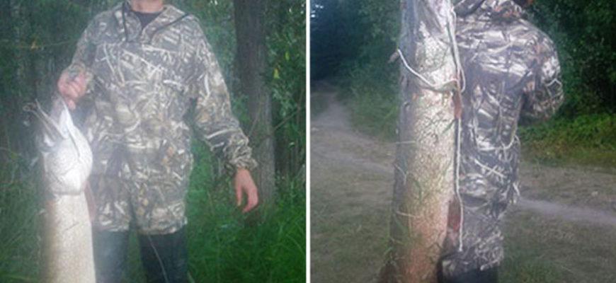 Житель России поймал щуку размером с человека