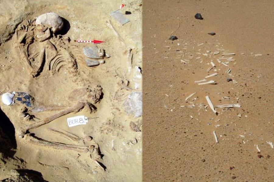 Ученые заявили об обнаружении в Египте следов неизвестной развитой цивилизации