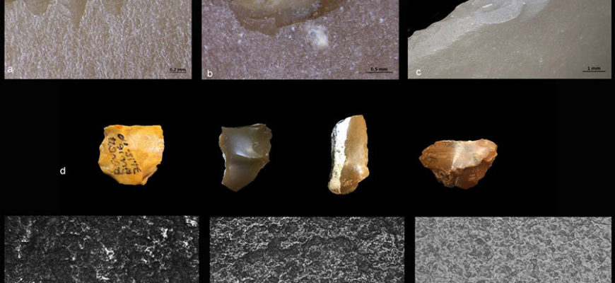 В Израиле обнаружили самые древние «хирургические» инструменты
