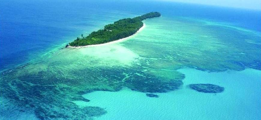Новая столица Индонезии будет построена среди джунглей