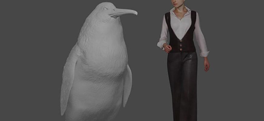 В Новой Зеландии были найдены останки гигантского пингвина