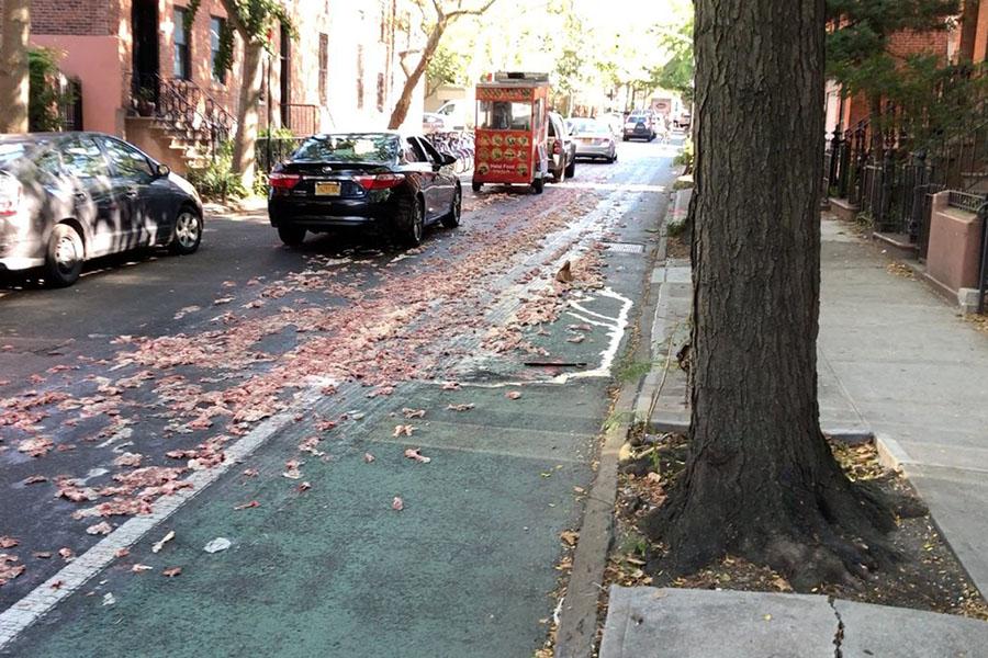 Улица в Нью-Йорке оказалась завалена частями куриных тушек
