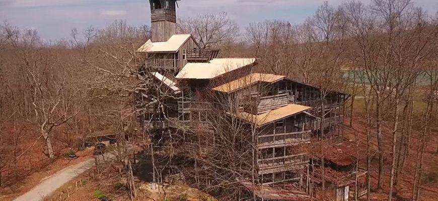 В Кроссвилле находится самый большой дом на дереве в мире