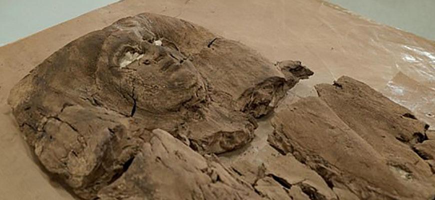 Археологи раскрыли лицо египетской принцессы Хатшепсет, жившей почти 4000 лет назад
