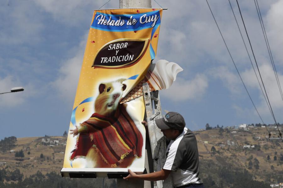 Мороженое со вкусом морской свинки предлагают купить в Эквадоре