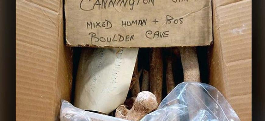 Найдены 9000-летние кости самых старых жителей Англии