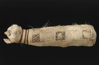 Ученые узнали, что находится внутри древнеегипетской мумии кошки