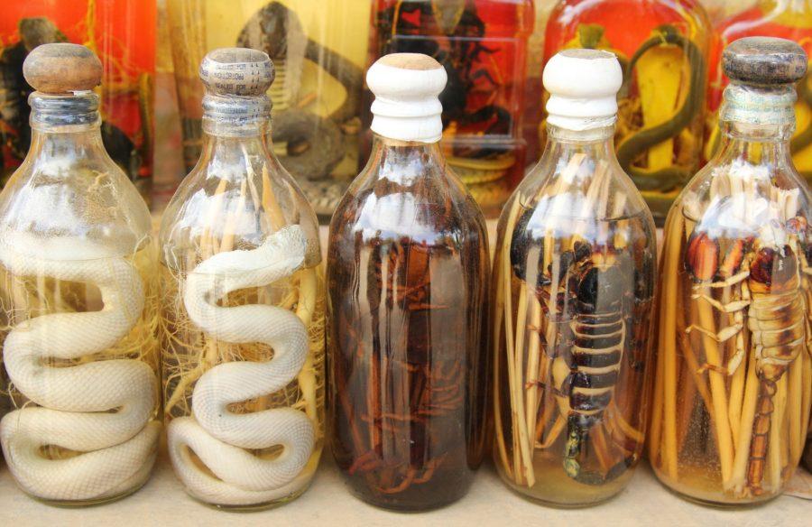 Напитки на змеях