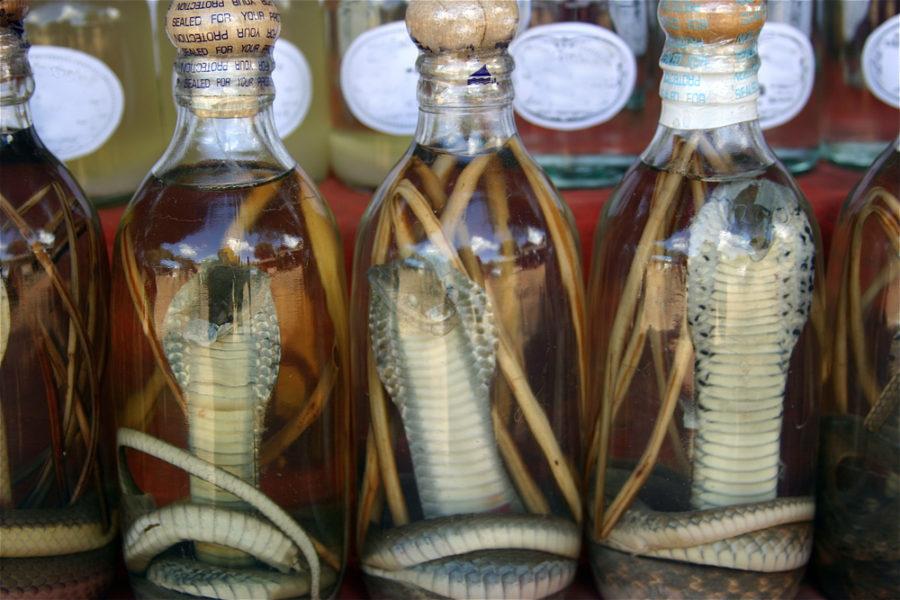 Алкоголь из ядовитой змеи
