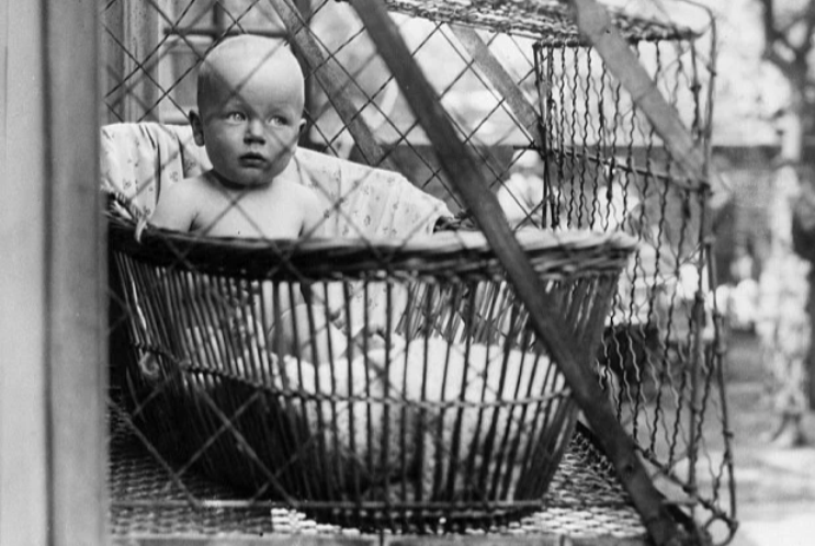 Ребенок в ящике за окном
