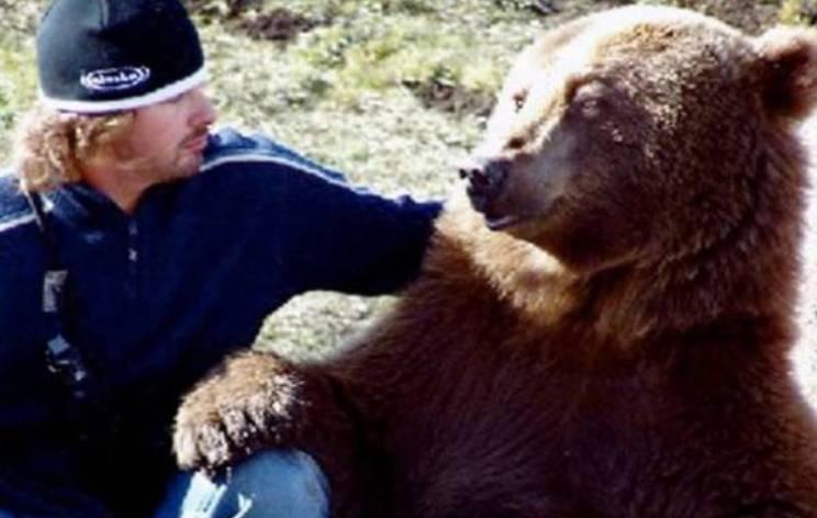 Выросший медведь