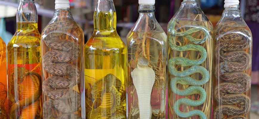 змеи в бутылках