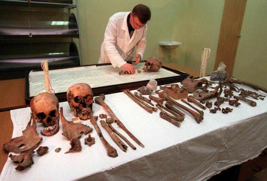 Экспертиза скелетов