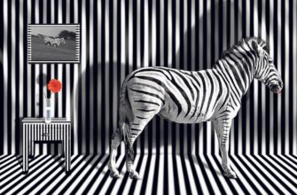 Зебра дикое животное
